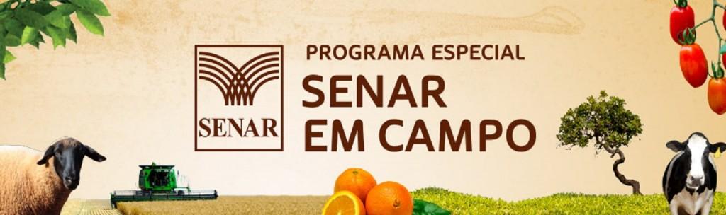 senar_campo